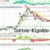 El algodón: continua en tendencia bajista con objetivo $33