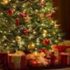 Felices Fiestas, Feliz Navidad y próspero 2013