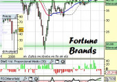 Análisis de Fortune Brands