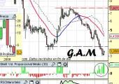 Análisis de G.A.M