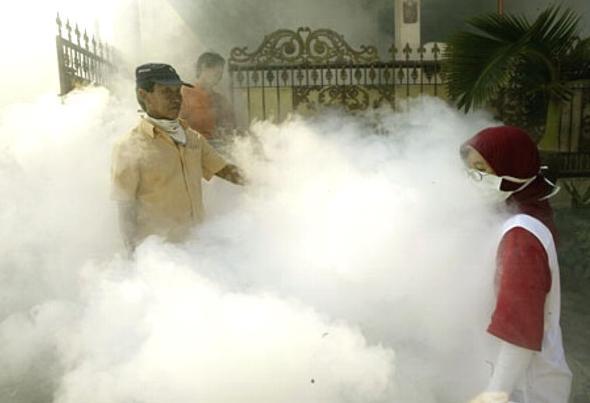 Bombas de humo griegas