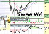 Análsis de Zimmer Holding