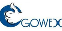 logogowex2