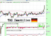 tag immobilien enero2014